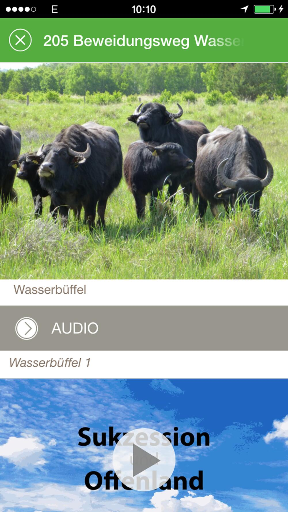 Animation, Fotos und Audiodatei zu einem Point of Interest. © DBU Naturerbe